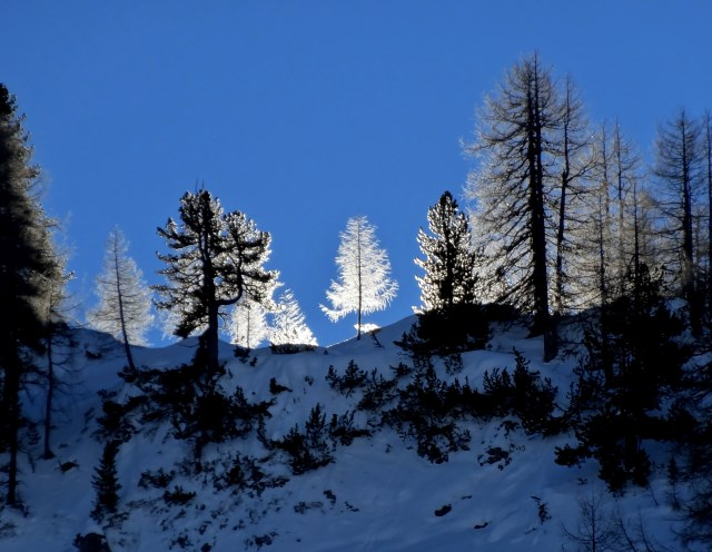 Obertauern (1)